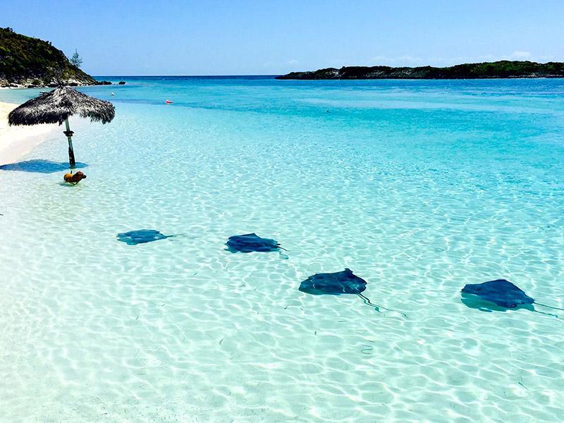 2 - sejur bahamas
